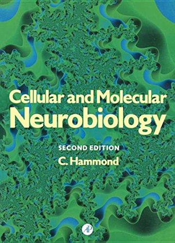 9780080983929: Cellular and Molecular Neurobiology