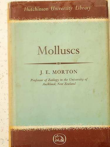 9780090359431: Molluscs (University Library)