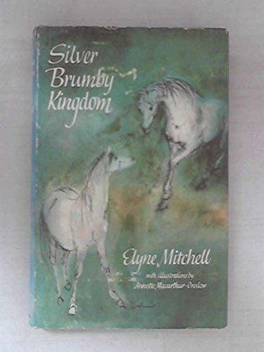 9780090795604: Silver Brumby Kingdom