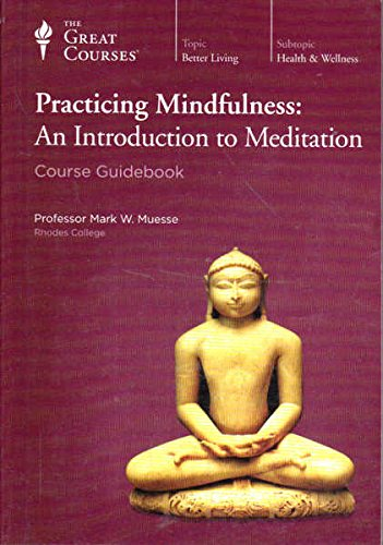 9780091064709: Practical Buddhism