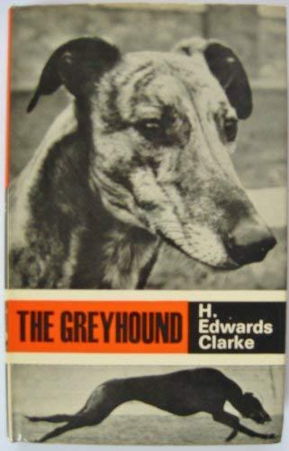 9780091156503: The Dark Eye: Aventuria Adventure Card Game (Popular Dogs' breed series)