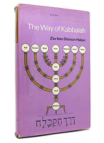 9780091254100: The way of Kabbalah