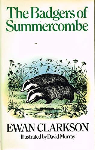 9780091299200: Badgers of Summercombe