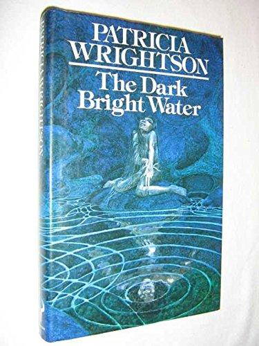 9780091361808: Dark Bright Water