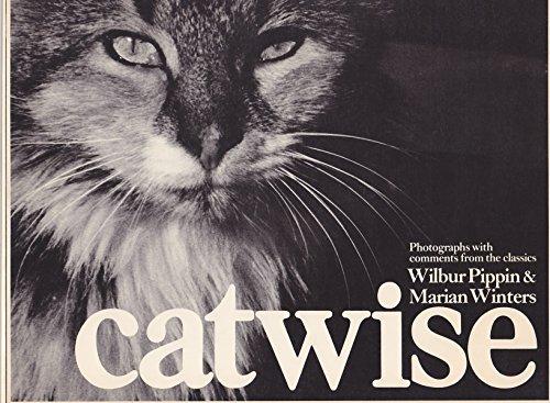 9780091402815: Catwise