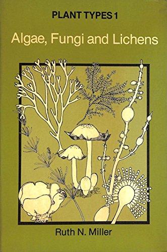 9780091444815: Plant Types 1 - Algae, Fungi & Lichens