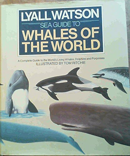 9780091466008: Sea Guide to Whales of the World