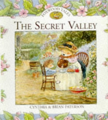 9780091765897: The Secret Valley