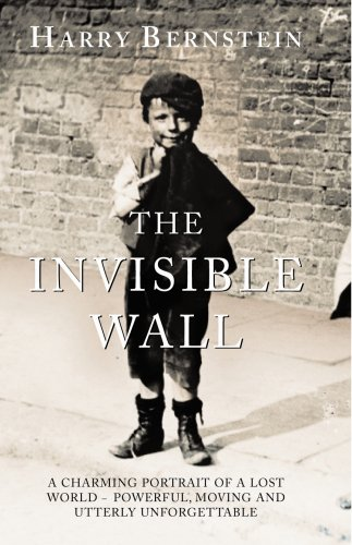 9780091795436: The Invisible Wall