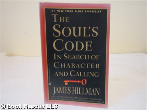 9780091834371: The Soul's Code