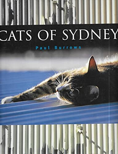 9780091836313: Cats of Sydney by Paul Burrows
