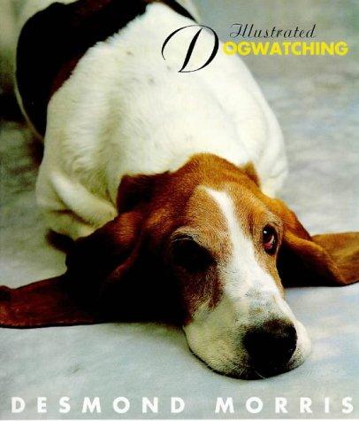 9780091865160: Illustrated Dogwatching