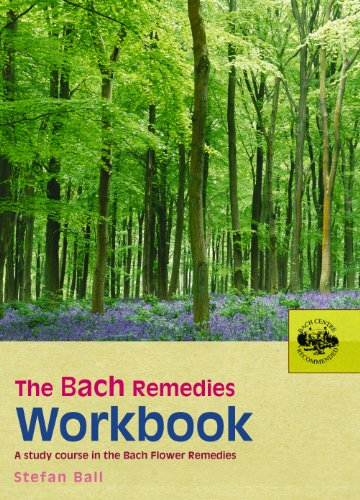 9780091906528: The Bach Remedies Workbook
