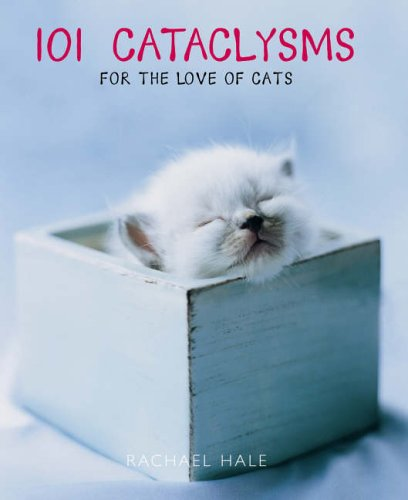 9780091913656: 101 Cataclysms: For the love of cats