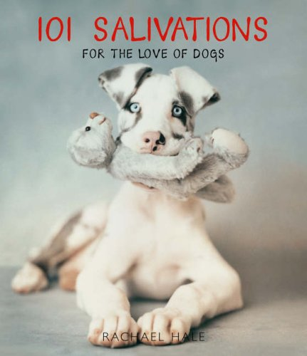 9780091913663: 101 Salivations: For the love of dogs