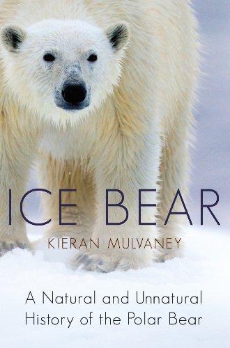 9780091926106: Ice Bear: A Natural and Unnatural History of the Polar Bear