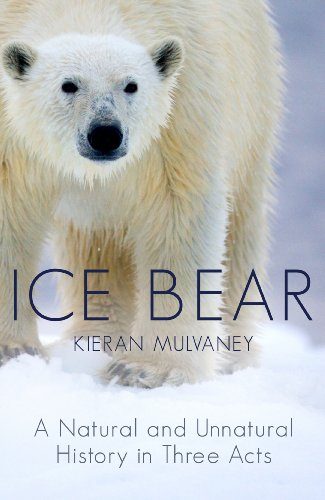 9780091926113: Ice Bear: A Natural and Unnatural History in Three Acts