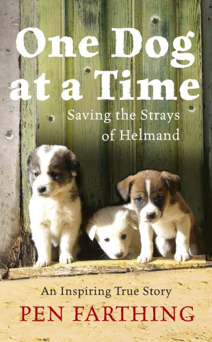 9780091928803: One Dog at a Time: Saving the Strays of Helmand - An Inspiring True Story