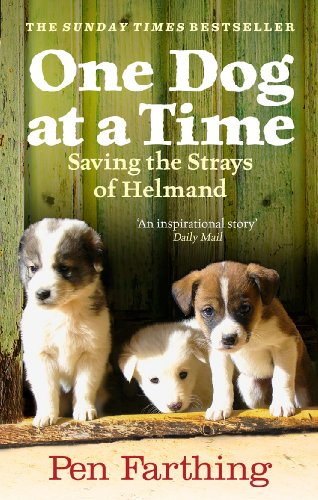 9780091928810: One Dog at a Time: Saving the Strays of Helmand