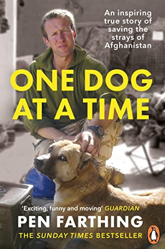 9780091928810: One Dog at a Time: Saving the Strays of Helmand - An Inspiring True Story