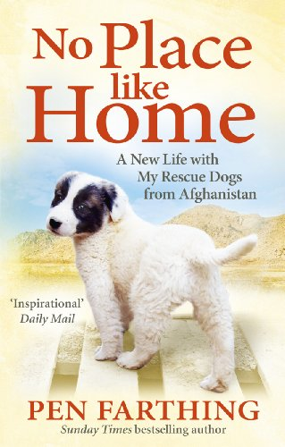 9780091928841: No Place Like Home: A New Beginning with the Dogs of Afghanistan