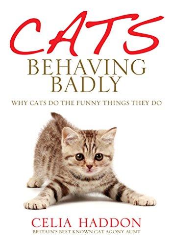 9780091932152: Cats Behaving Badly