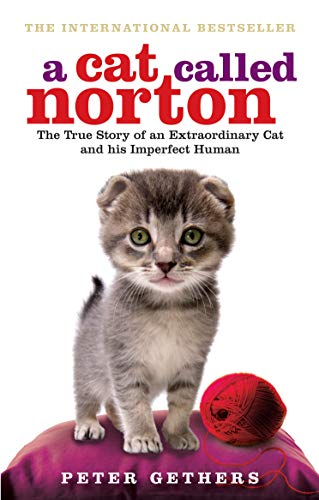 9780091933296: A Cat Called Norton: The True Story of an Extraordinary Cat and His Imperfect Human