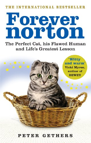 9780091933302: Forever Norton: The Perfect Cat, his Flawed Human and Life's Greatest Lesson
