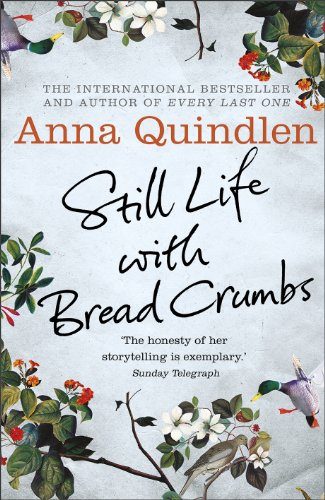 9780091954123: Still Life with Breadcrumbs
