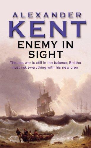 9780099055204: Enemy in Sight