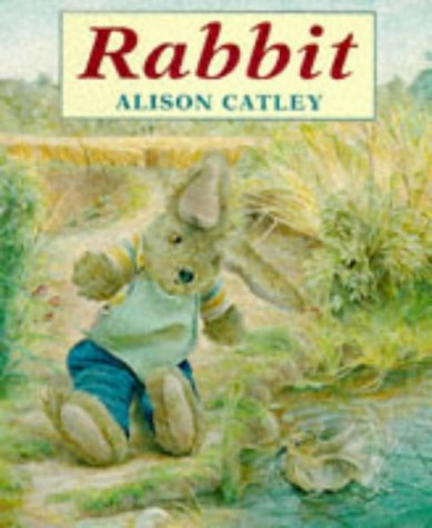 9780099183013: Rabbit (Red Fox picture books)