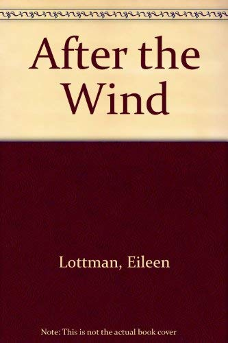 9780099212300: After the Wind