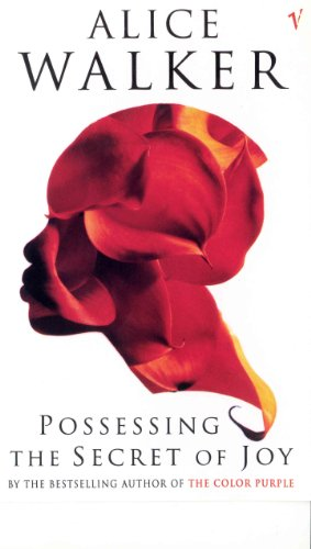 9780099224112: Possessing The Secret Of Joy