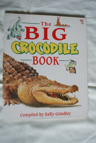 9780099255017: The Big Crocodile Book (Red Fox story books)