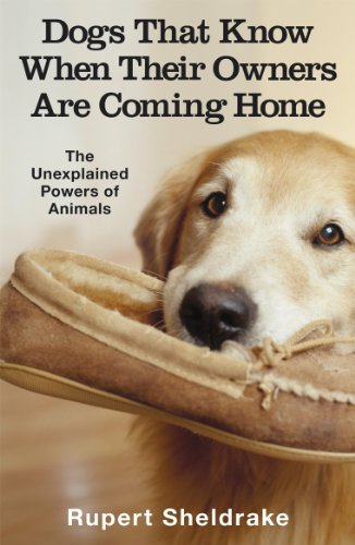 9780099255871: Dogs That Know When Their Owners Are Coming Home: And Other Unexplained Powers of Animals