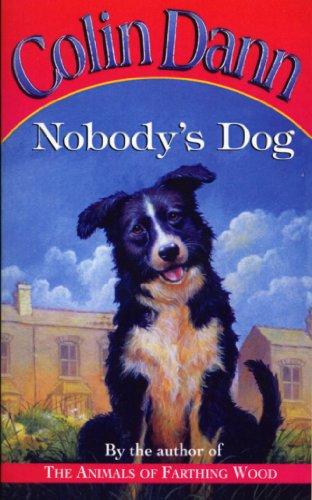9780099267072: Nobody's Dog