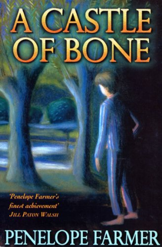 9780099267188: A Castle Of Bone
