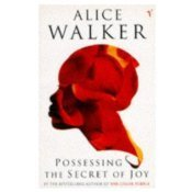 9780099268819: Possessing the Secret of Joy