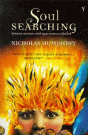 9780099273417: Soul Searching: Human Nature and Supernatural Belief