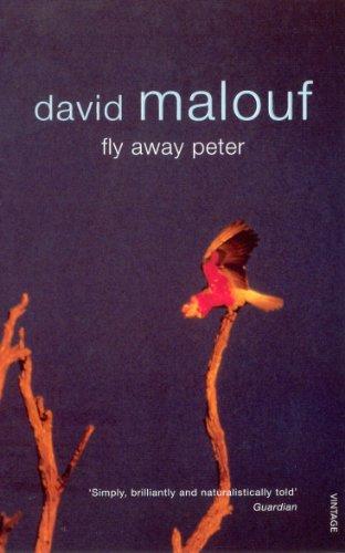 9780099273820: Fly Away Peter