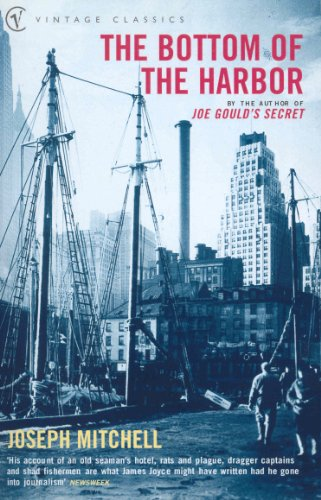 9780099284741: The Bottom of the Harbor (Vintage Classics)