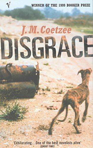 9780099284826: Disgrace (Roman)