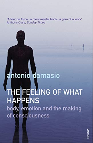 9780099288763: The Feeling Of What Happens: Body, Emotion and the Making of Consciousness