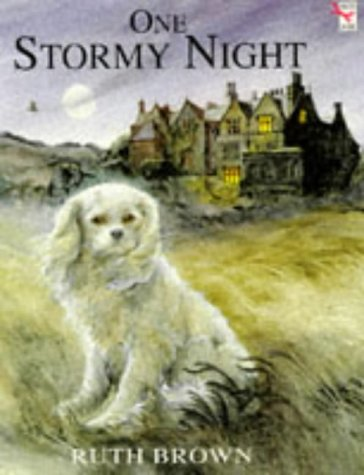 9780099298915: One Stormy Night (Red Fox picture books)