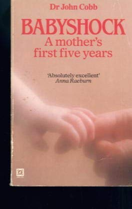 9780099329503: Babyshock: A Mother's First Five Years
