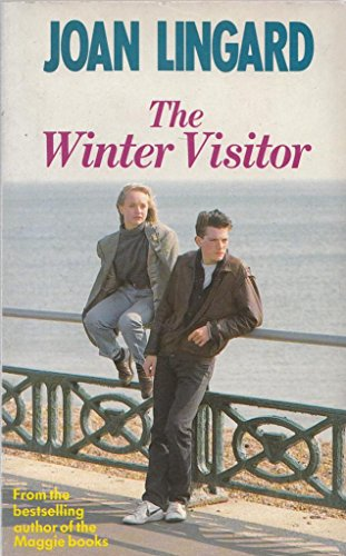 9780099385905: The Winter Visitor