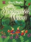9780099388401: Enchanted Wood