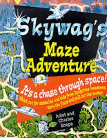 9780099404828: Skywags Maze Adventure