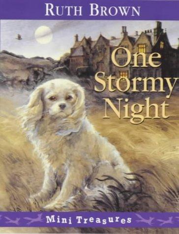 9780099407812: One Stormy Night (Red Fox Mini Treasure)