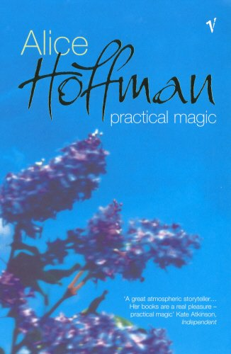 9780099429173: Practical Magic
